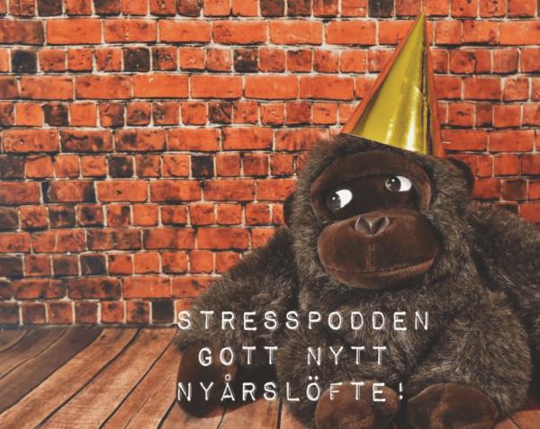 17.Stresspodden-nyarslofte
