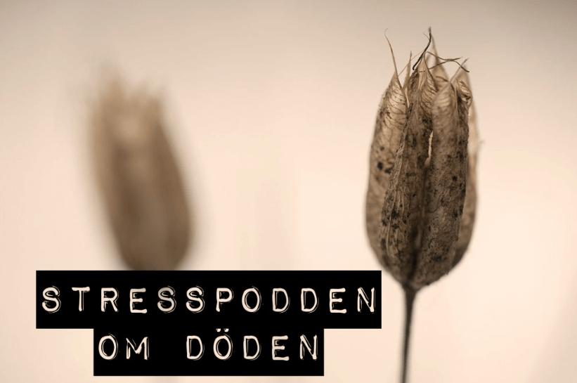 32.Stresspodden-om-döden-C