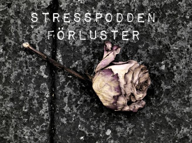 7.Stresspodden-förluster
